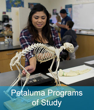 Petaluma SRJC programs of study