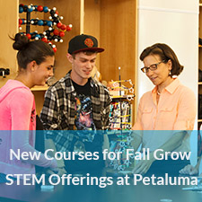 STEM Offerings